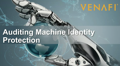 Auditing Machine Identity Protection