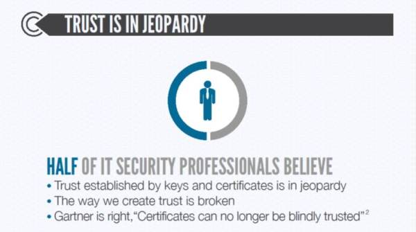 Half of IT security professionals believe online trust is in jeopardy.