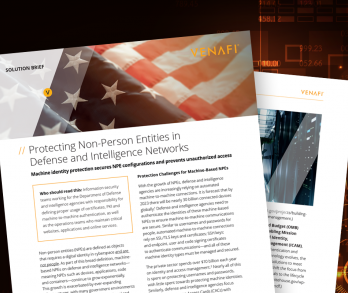 Protecting Non-Person Entities in Defense and Intelligence Networks